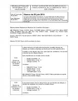 RAPPORT CM 20 JUIN 2014